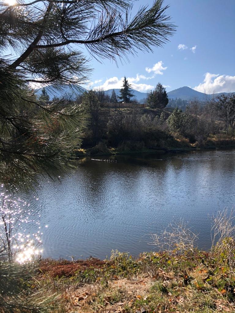 Paula Hyatt Ashland Oregon